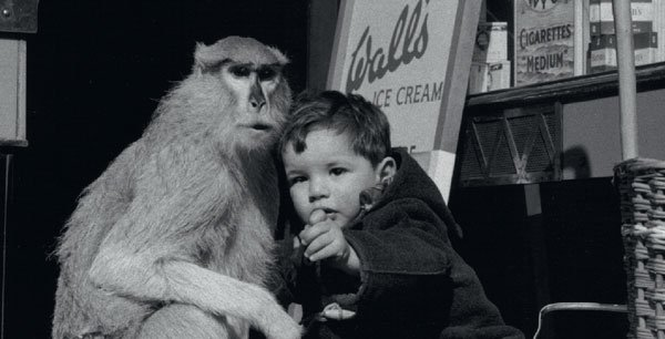 Child with Monkey, Wolf Suschitzky